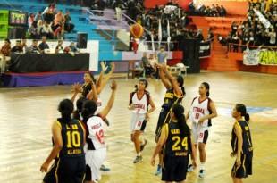 Basket Coy