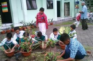 Serius : Salah satu kegiatan berkebun yang diikuti para siswa SMP Muhammadiyah Plus Klaten Utara